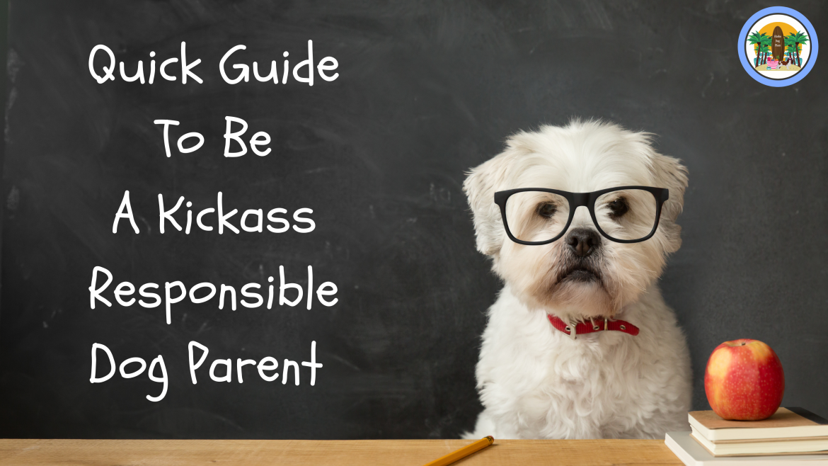 Quick Guide to be a Kickass Responsible Dog Parent