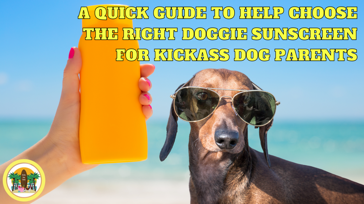 A Quick Guide to Help Choose the Right Doggie Sunscreen for Kickass Dog Parents