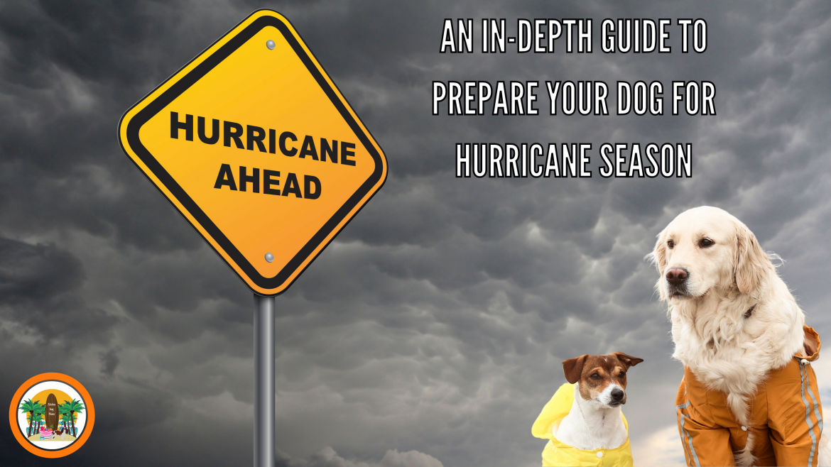 An In-depth Guide to Prepare Your Dog for Hurricane Season